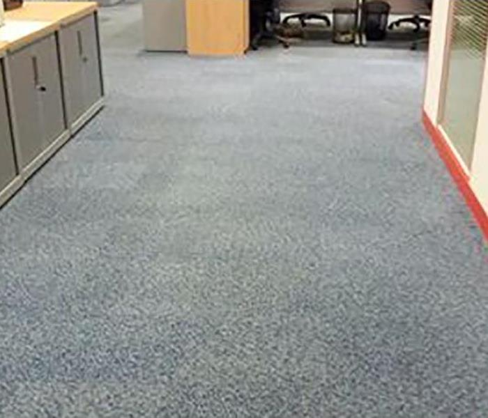 water damaged restored carpet