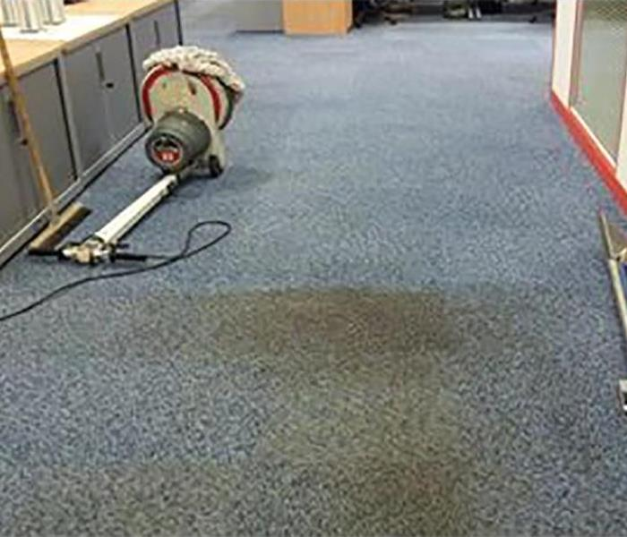 water damaged stained carpet