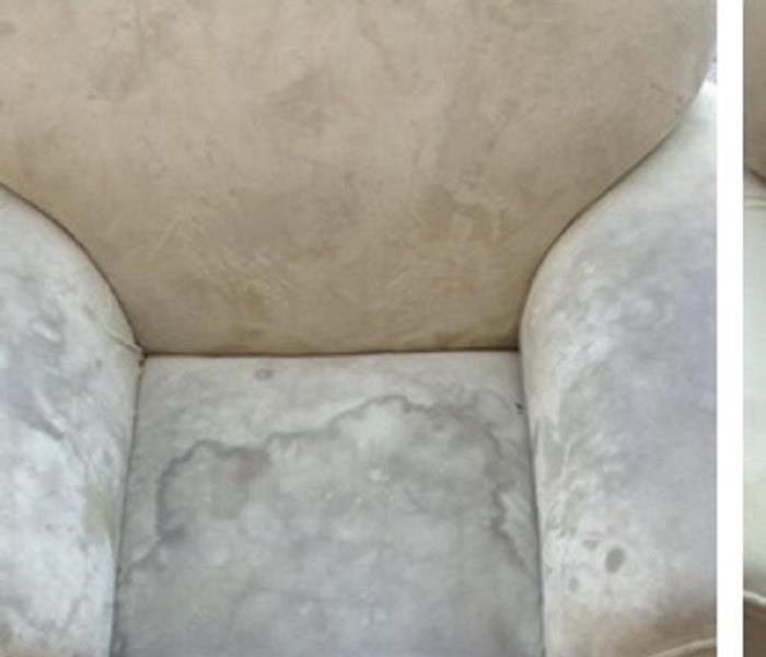 Upholstery Cleaning Before